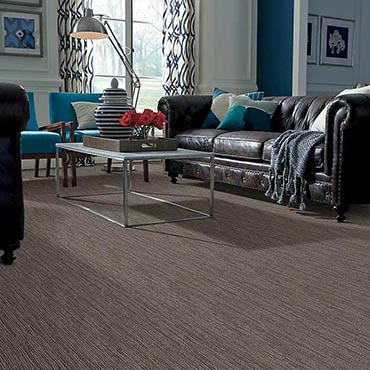 Anso® Nylon Carpet | Orange, TX
